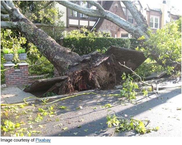 Top Tips for Rebuilding Your Home Office After Storm Damage