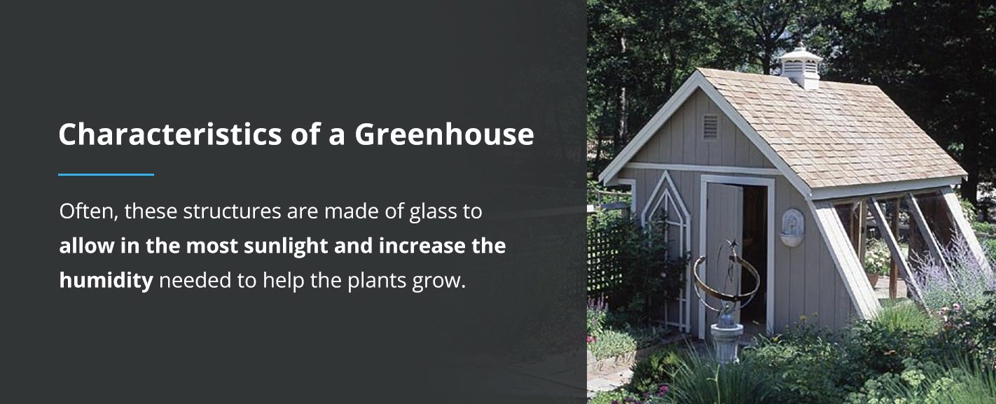 A Guide to Greenhouse Plans